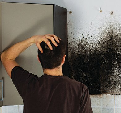 How to Prevent Mold and Mildew
