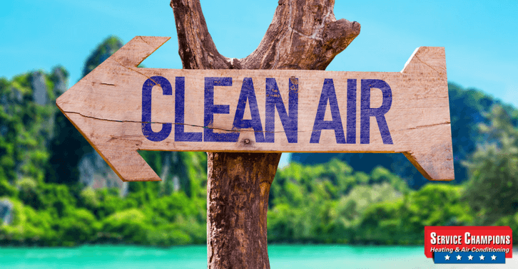 Your Choices for Air Cleaning Excellence