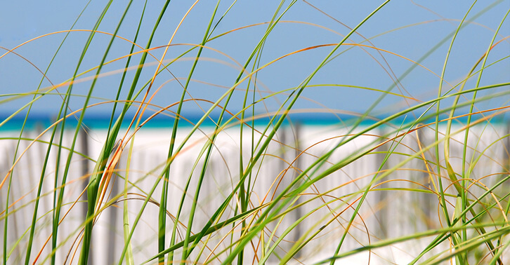 What Ocean Air Does to Your HVAC System?