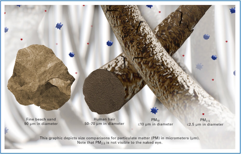 Particulate Matter in Microns - What is a micron?