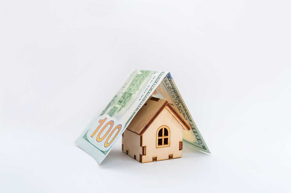 house covered by dollars concept by saving money with good insulation